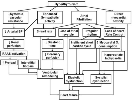 database diagram shapes